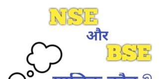 Who is the owner of NSE and BSE?
