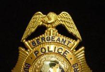 Deputy Superintendent of Police ( DSP ) क्या है और कैसे बने?